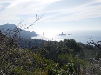 Vue vers le Cap Dramont et l'Île d'Or