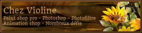 Copyright sur les tutoriels B92033562c0258e9e295
