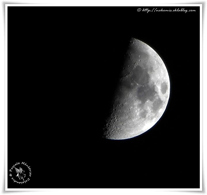 Dame la Lune cette nuit...