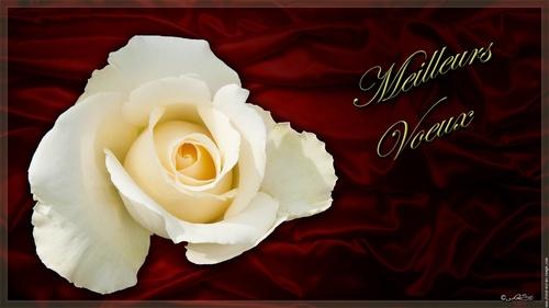 Bonne et heureuse année 2013!
