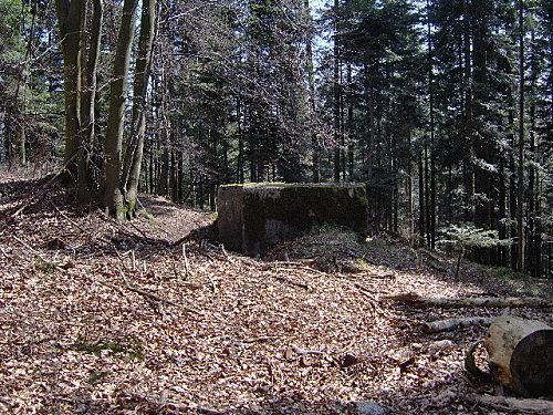 roche pierre piquee neuvevoie derzognier 042