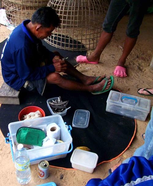 Au pays des khmers d'ISAN (2). Les coqs de combat !