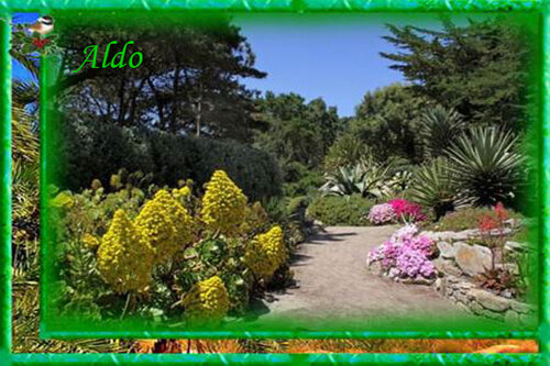 PPS Jardin Delaselle