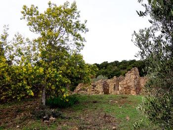 Les ruines de Roqueyrol