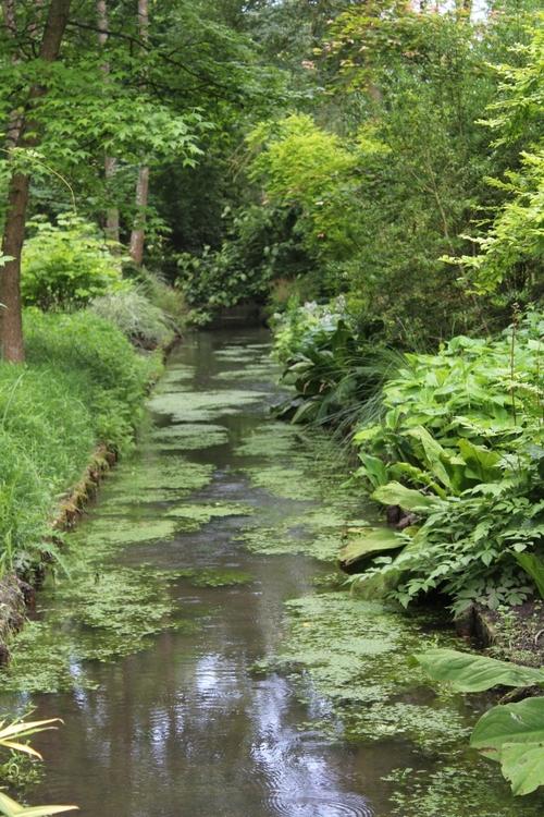 Arboretum des Près de Culands