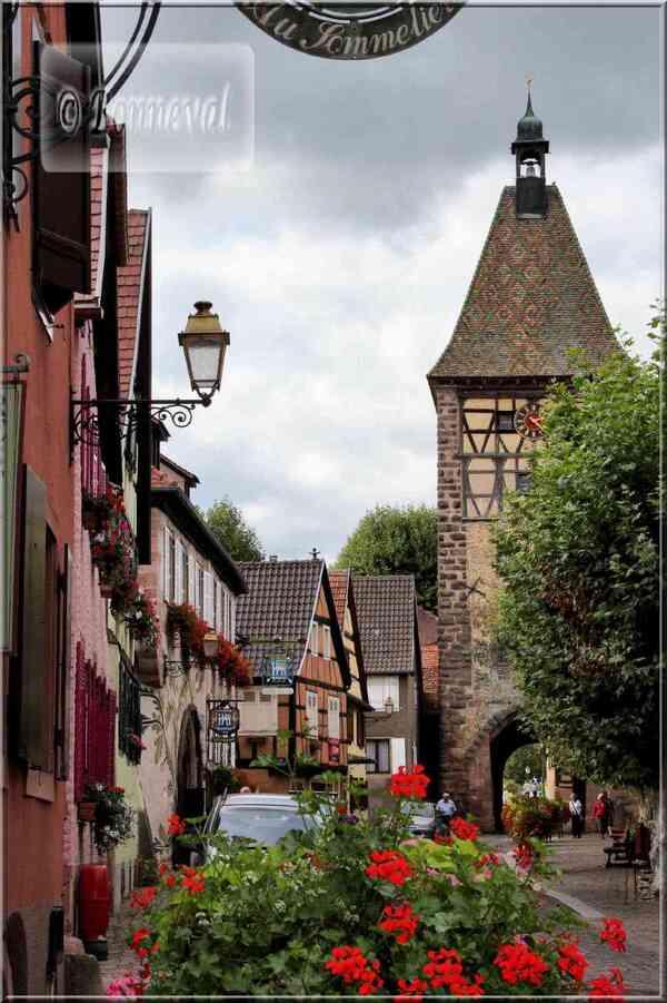 Alsace route des vins de Bergheim à Bernardswiller Bergheim La Porte Haiute