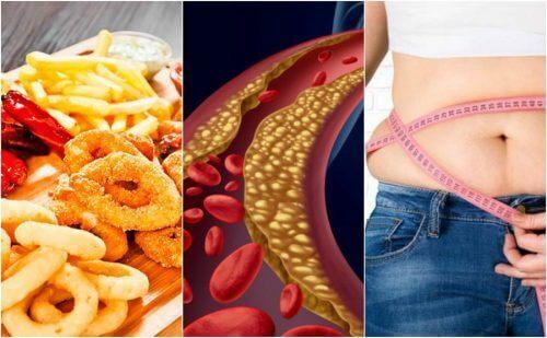 6 facteurs qui influencent l'augmentation du cholestérol