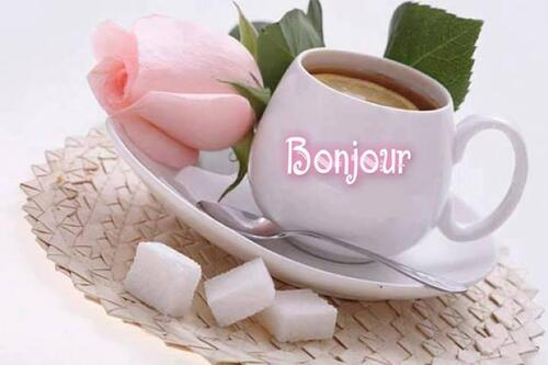 Bonne journée !