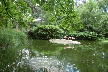 Zoo Duisburg 2012 800