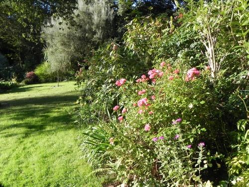 Travaux  au Jardin  en Automne