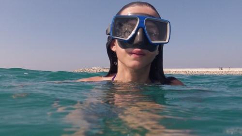 UAE poissons