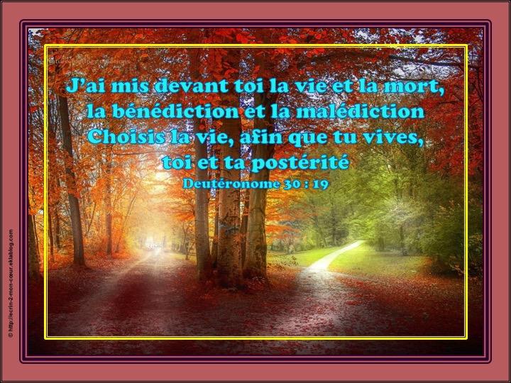 Choisis la vie, afin que tu vives - Deutéronome 30 : 19
