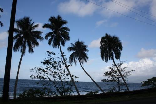 Tahiti (24)