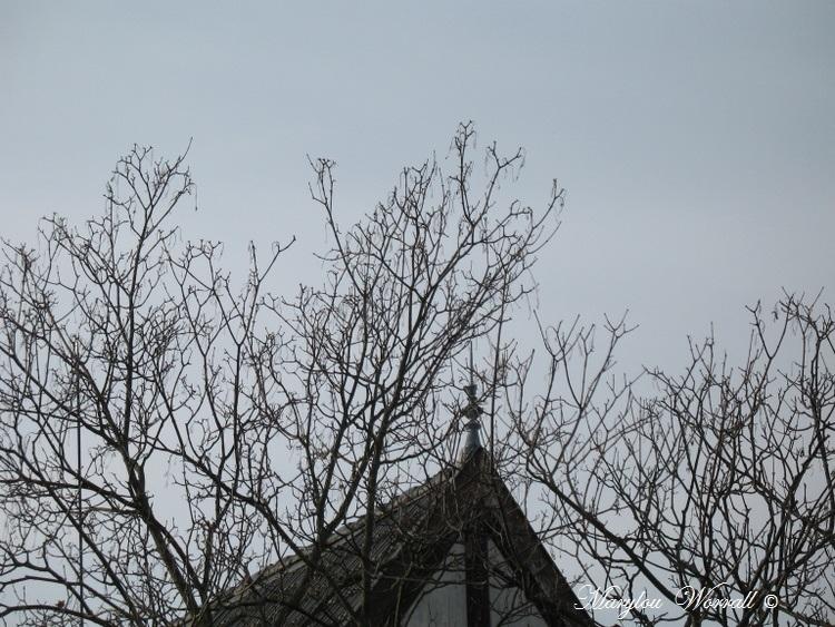 Ciel d'Alsace 251