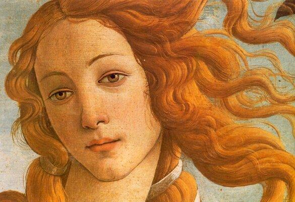 Benjamin Vnuk    vs   Sandro Botticelli