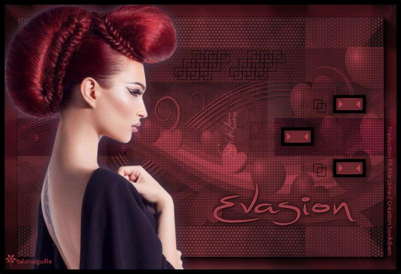 *** Evasion ***