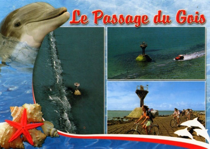 carte vendee-passage gois 01