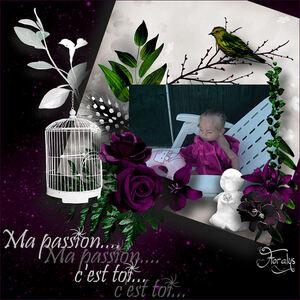 """Kit """"Passion"""""""