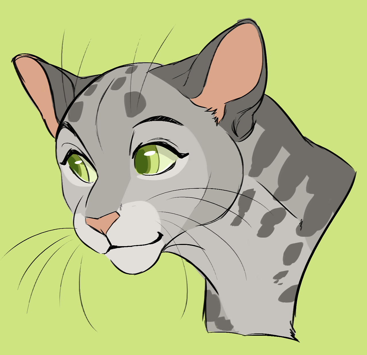 Plume Blanche Brindleface Warrior Cats Project