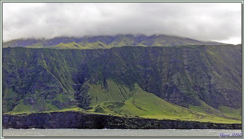 """Après le champ de patates, nous arrivons à Cave Point, avec ses """"résidences secondaires"""" et ses vaches en liberté - Tristan da Cunha"""