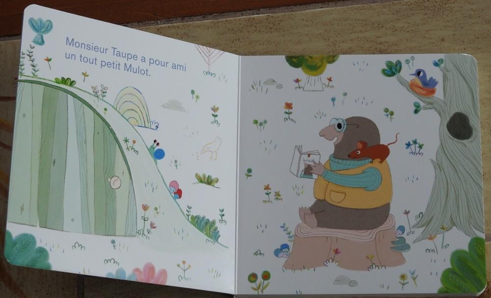 """""""Où est Mulot ?"""", un livre cartonné pour les tout-petits..."""