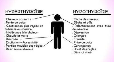 Comment va votre thyroïde ?