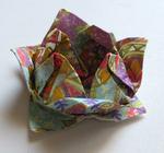 Mes débuts en origami