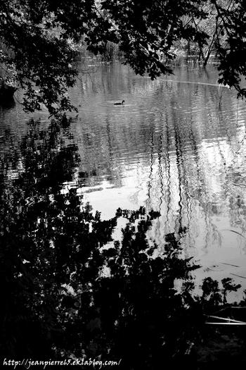 2015.05.31 Lacs St-Hélène, St-Clair (Savoie)