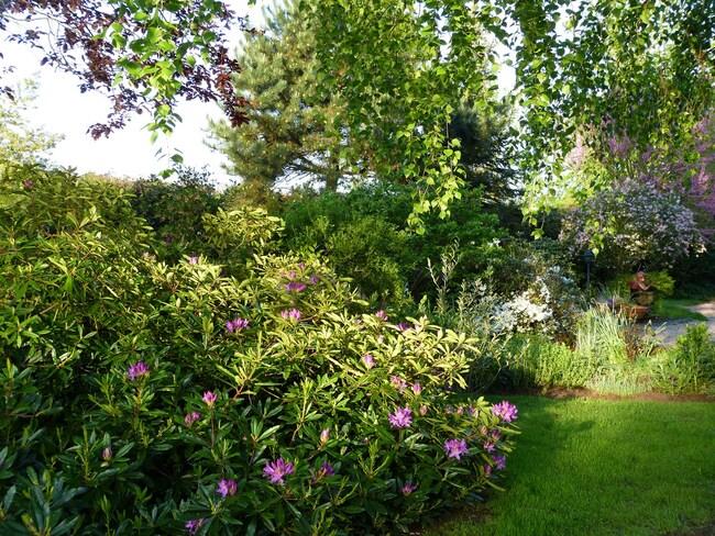 Le jardin le 5 au 7 mai 2015