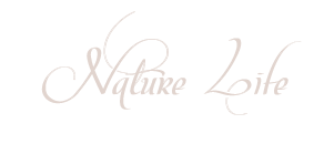 Katinka-tutorial-Nature Life