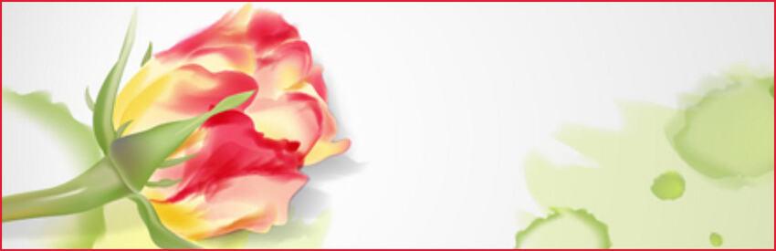 header florale vectoriel