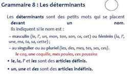 Comprendre le fonctionnement de la langue CE1 - période 3
