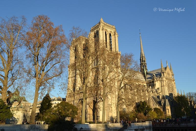 Histoire de Notre-Dame de Paris et une petite question ...