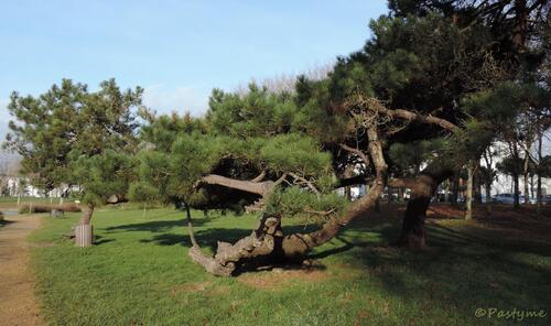 Parc Paysager de Saint Nazaire