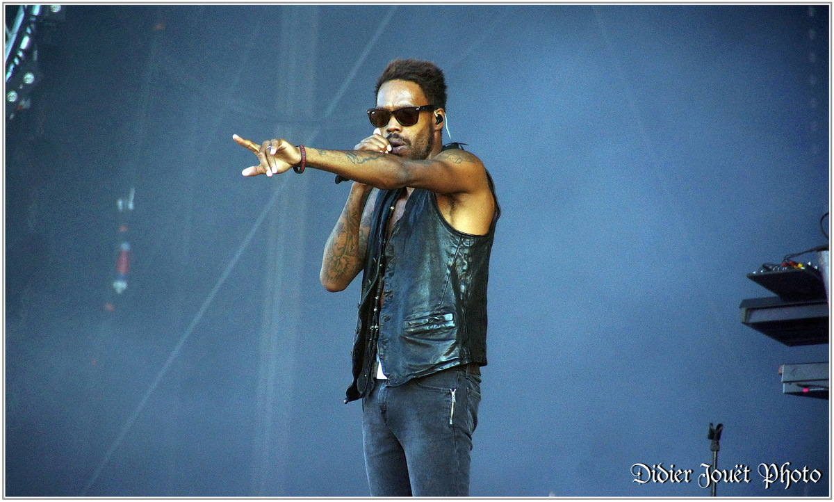 Skip the Use (1) - Festival des Vieilles Charrues 2014