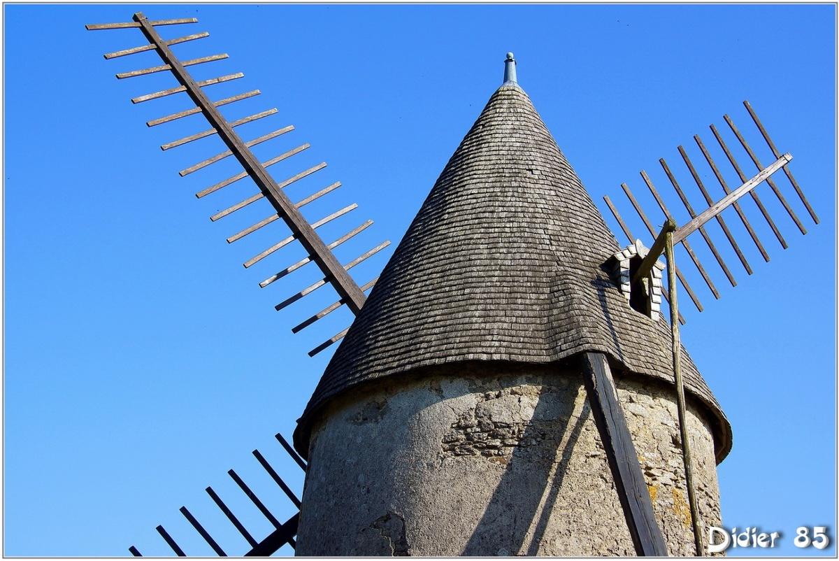 (85) Vendée - Les Herbiers (1) - Mont des Alouettes / Moulin