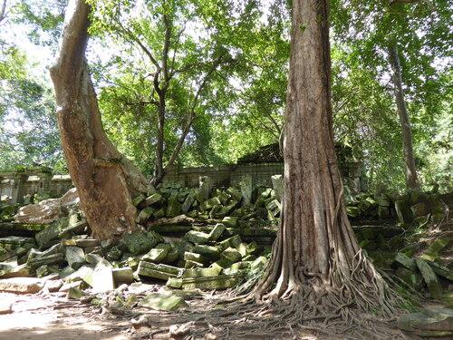 J16, Temple de Beng Mealea, Cambodge