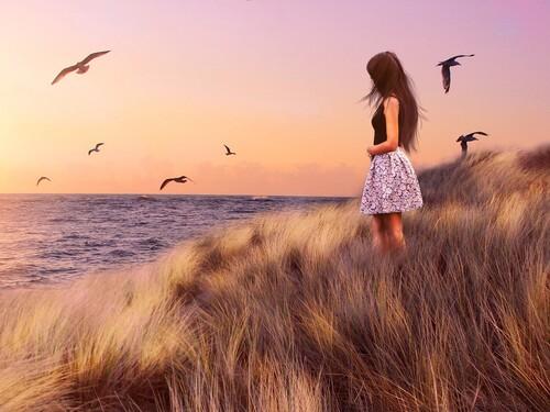 Belles images de  paysages avec des humains