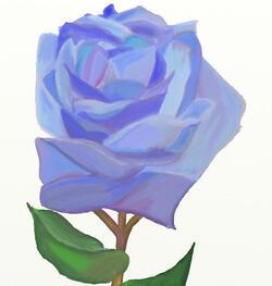 a bleu rose