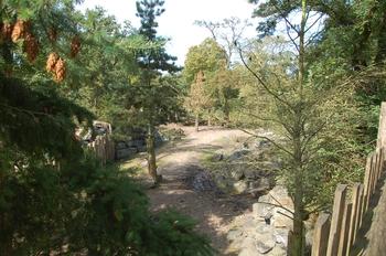 dierenpark emmen d50 003