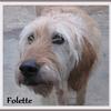 Folette 1