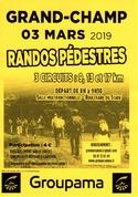 Entrainement dimanche 3 mars 2019