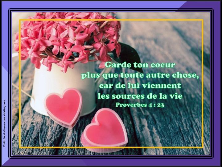 Garde ton coeur plus que toute autre chose - Proverbes 4 : 23