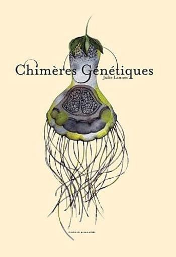 chimeres2