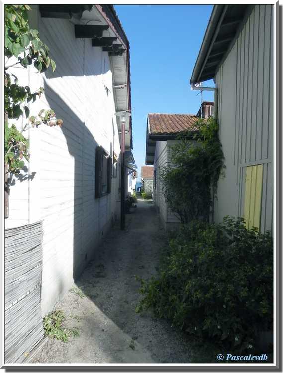 Village de L'Herbe sur le Bassin d'Arcachon