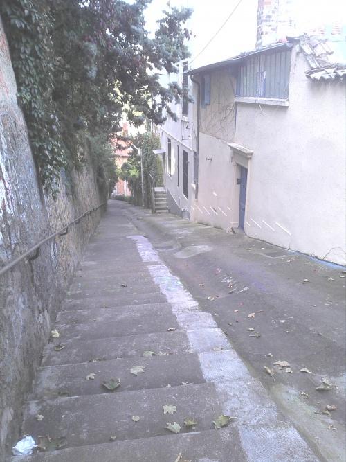La rue Joséphin Soulary ( plus de 400 marches)