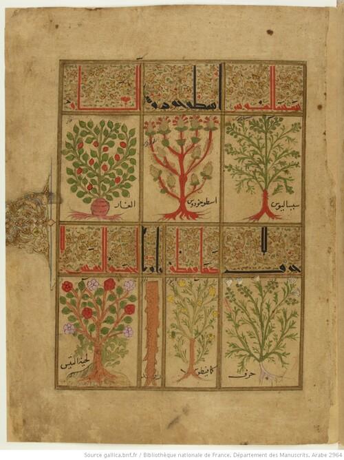 1198 : la Thériaque - Kitāb al-Diryāq