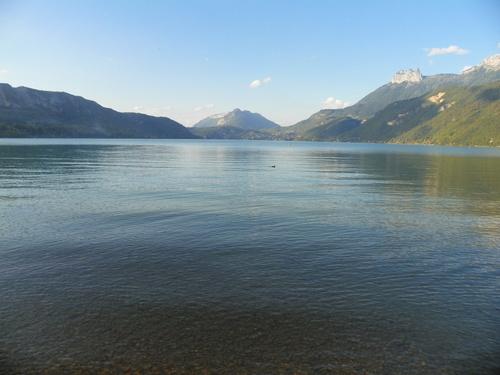 La réserve du Bout du Lac ( 1 )