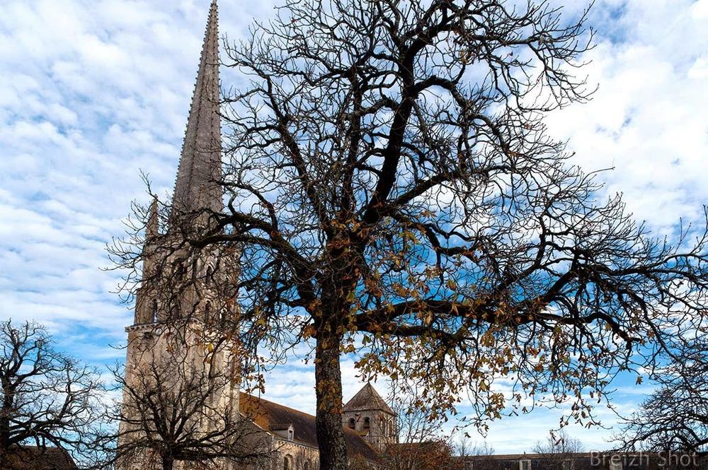 abbatiale saint-savin-sur-gartempe