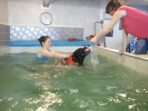 ermes-piscine.jpg